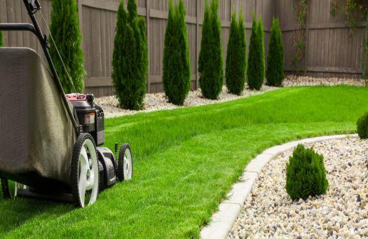 Bahçe bakım ve peyzaj hizmetleri